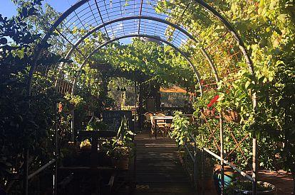 Function venue Little Vines